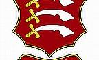 InsureandGo Street20 Cricket Scheme A Hit At Southend
