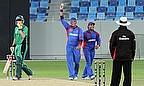 Hamid Hassan celebrates a wicket