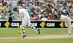 Adelaide Ashes Tes action