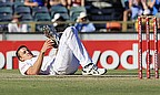 Morkel Suffers Ankle Injury