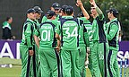 Ireland celebrate a wicket