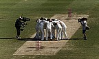 Australia celebrate moments after the final wicket was taken