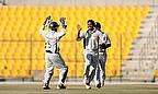 UAE players celebrate
