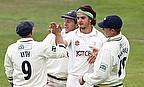 Yorkshire celebrate a wicket