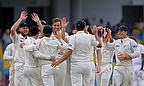 New Zealand players celebrate a wicket