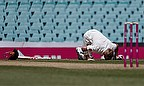 David Warner kissed the ground where Phil Hughes fell after reaching 63