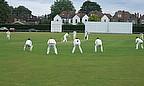 How do you pick a winning club cricket team?