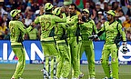 Manna In The Desert For Pakistan Cricket
