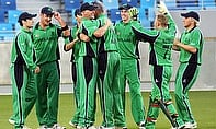 Ireland players celebrate a wicket
