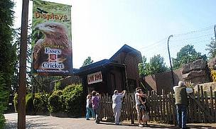 Essex Cricket Partners With Colchester Zoo