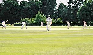 Pudsey Congs Beat Woodlands By One Wicket