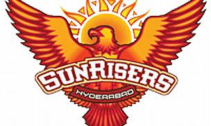 IPL 2013 - Sunrisers Hyderabad Squad