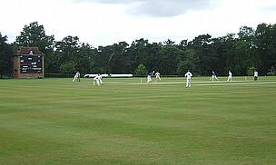 club cricket