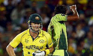 Australia Overcome Fiery Wahab Riaz To Enter Semi-Finals