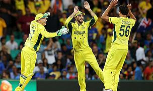 Australia celebrate a wicket against India
