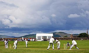 Bute Cricket Club are calling for new recruits - could you help?