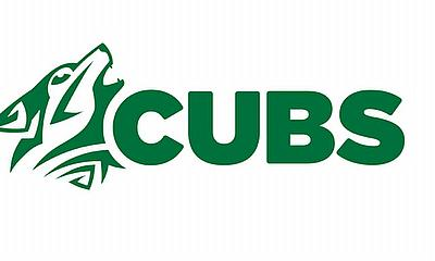 Ireland announces players for cubs winter training programme