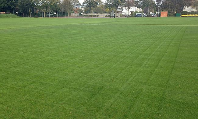 Braintree CC square after its first cut, feed and spray