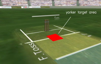 Where to pitch the ball to bowl the perfect yorker