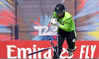 Ireland's Gary Wilson retires from professional cricket