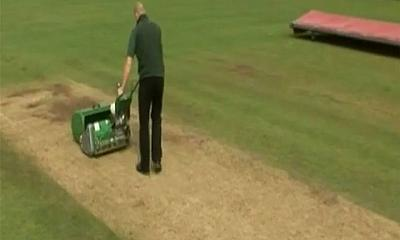 Dennis Mowers Cricket Mowers