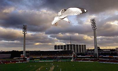 A seagull hovers near the main stand of the WACA cricket ground during the first class match between England and Western Australia