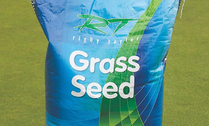 Perfectly Balanced R Grass Seed from Rigby Taylor